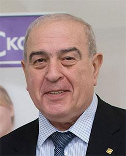 <strong> Шестопалов Александр Ефимович  </strong>